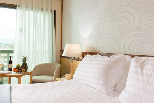 23 ATHENA BEACH HOTEL STANDARD ROOM LV