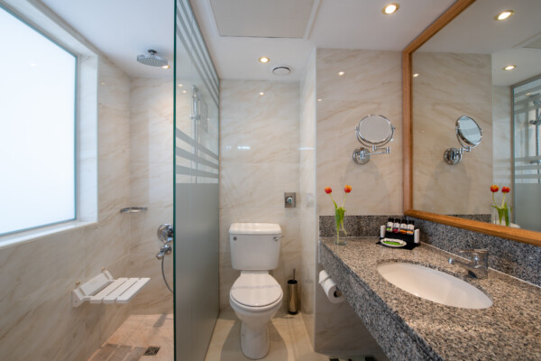 51 ATHENA BEACH HOTEL SUPERIOR DELUXE ROOM WITH TERRACE BATHROOM